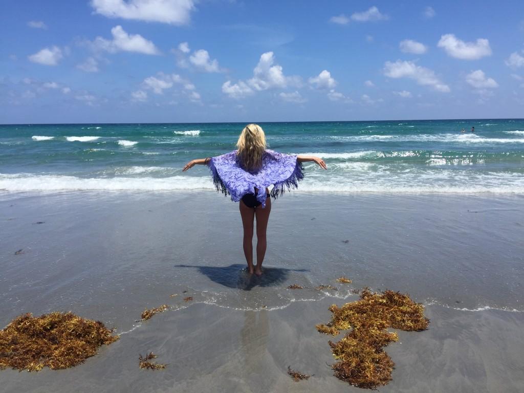 The Daydream Diaries Florida 3