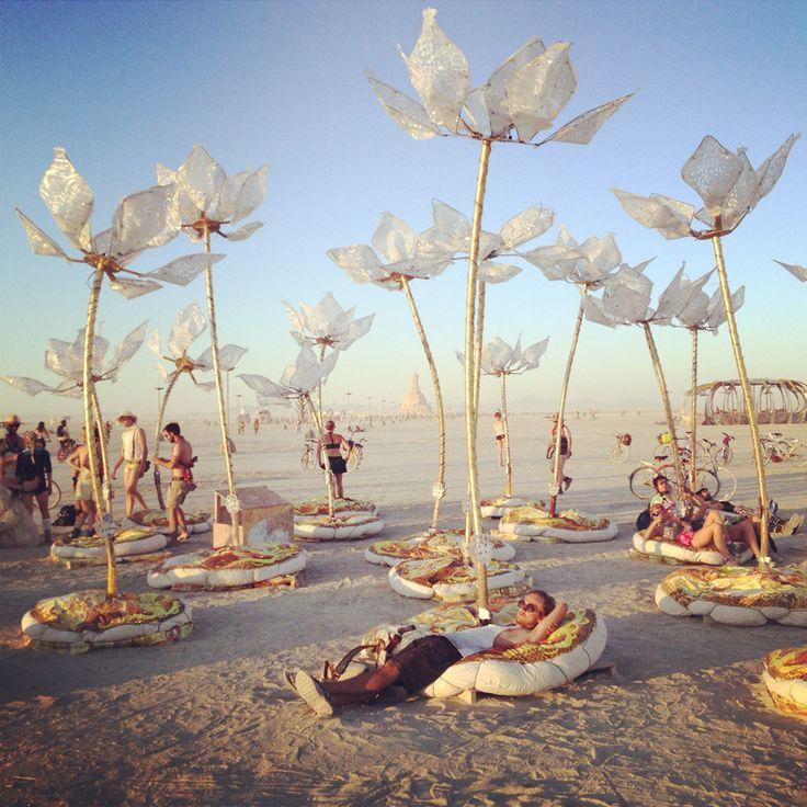 The Daydream Diaries Burning Man